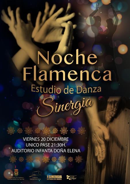 Noche Flamenca. Estudio de Danza Sinergia
