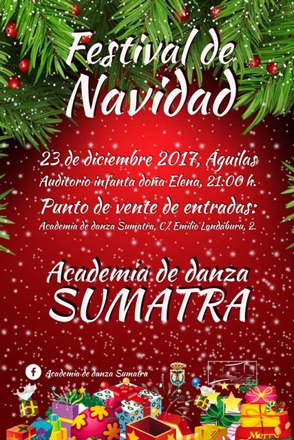 Festival de Navidad. Academia de Danza Sumatra
