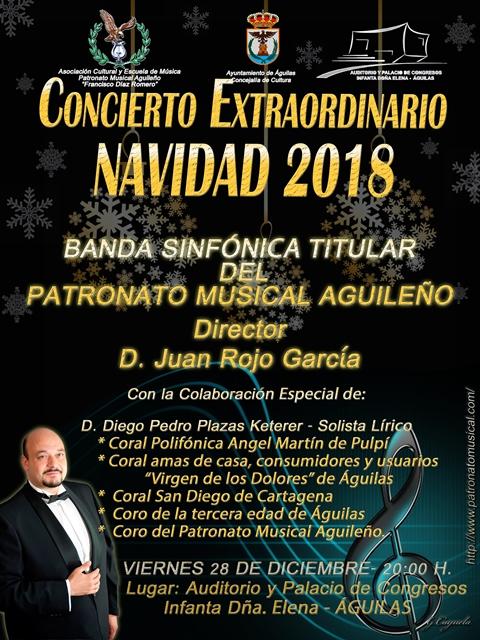 Concierto Extraordinario de Navidad 2018